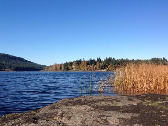 Cusheon Lake Resort: St Mary's lake, fall