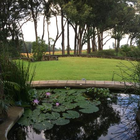 Waianuhea Bed & Breakfast: View of grounds