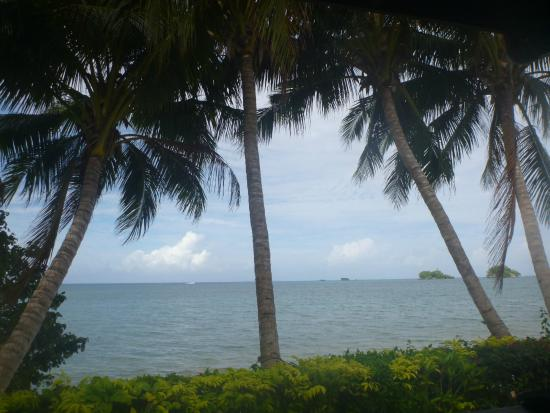 Coconut Grove Beachfront Cottages : View from the beachfront bure