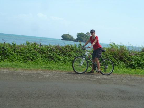 Coconut Grove Beachfront Cottages : Biking along the ocean road