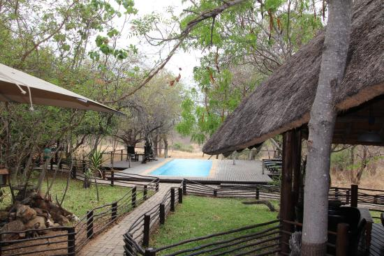 Toro Yaka Bush Lodge: Back area