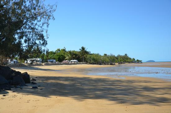 Kurrimine Beach Motel : kurrimine beach