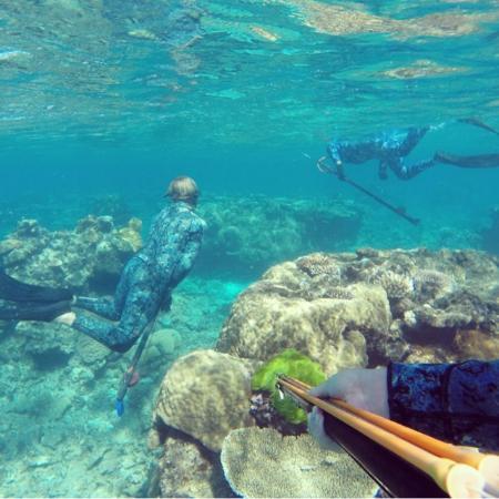 Kurrimine Beach Motel : Diving Kurrimine beach