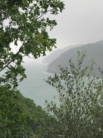 Agriturismo degli Olivi: Cinque Terre