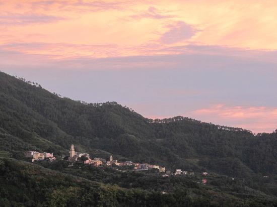 Agriturismo degli Olivi: On the way up to Degli Olivi