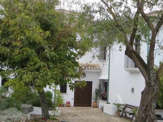 Casa Olea: Front entrance
