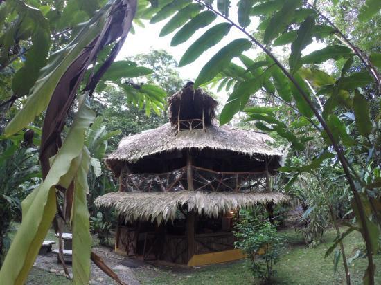 Casa Moabi: Casita