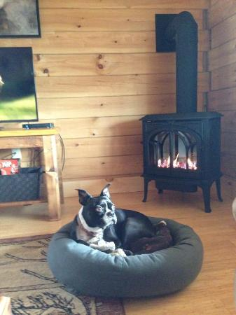 Fireplace Morrisville  Muddy Moose: My pups loved lounging in front of the fireplace