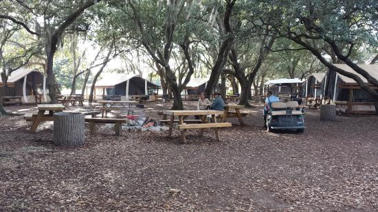 River Ranch Florida >> Glamping Area Picture Of Westgate River Ranch Resort And Rodeo