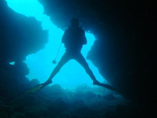 Papageno Resort : Diving