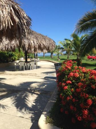 La Ensenada Beach Resort & Convention Center : Un día espectacular!!