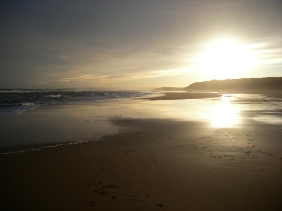 Balmedie Beach : Balmedie in the evening