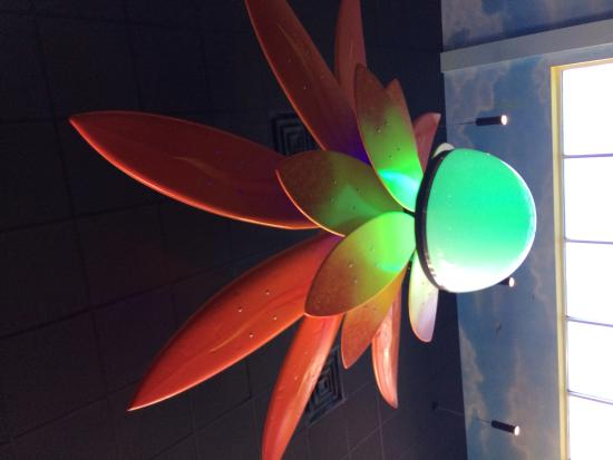 Mellow Mushroom: Pretty cool ceiling light - petals are surfboards and boogie boards!