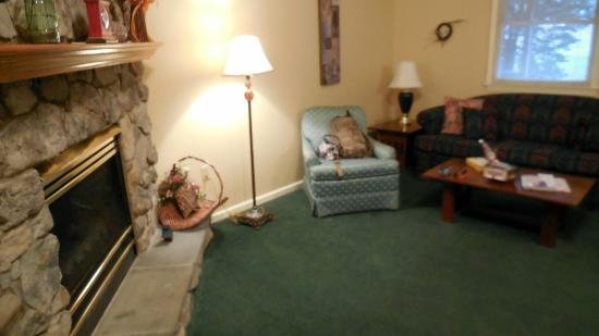 The Cabins at Brookside: Fireplace and sofa area