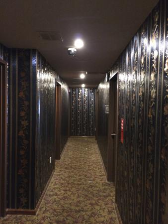Mayor Hotel: Hall dos quartos