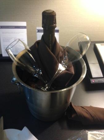 Hyatt Regency Suites Atlanta Northwest : gift from the hotel