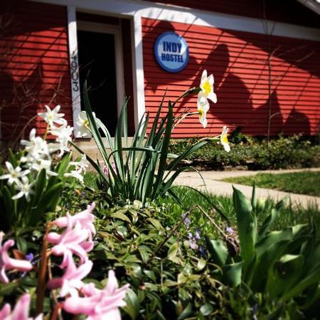 Indy Hostel: Spring Hostel