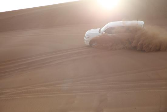 Arabian Night Safari ABM Tours - Day Tours