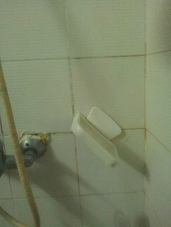 Apartamentos Koka: Shower