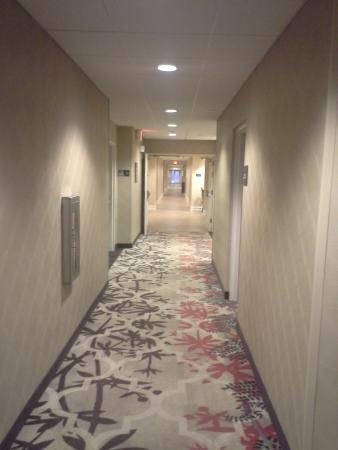 Hampton Inn & Suites Outer Banks / Corolla: Hallway