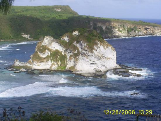 Bird Island : Bird Island