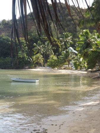 Ocean Bay Guest House: la spiaggia di anse possesion
