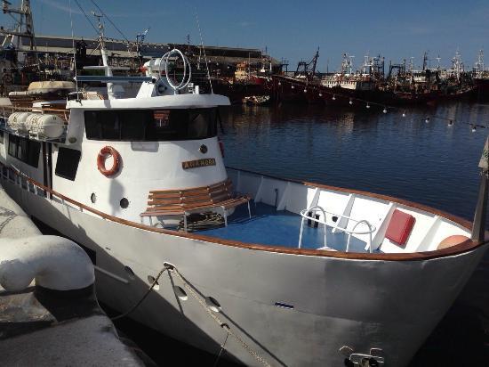 Crucero Anamora: vista del crucero