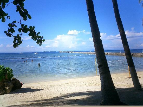 Pacific Cebu Resort: ビーチ
