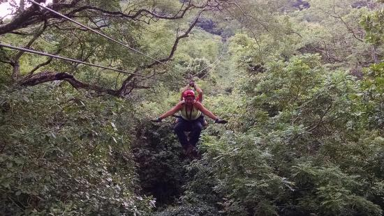 The Congo Trail Canopy Tour: AMAZING FUN!