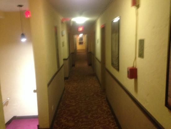 AAE Miami Beach Lombardy Hotel: Corredor