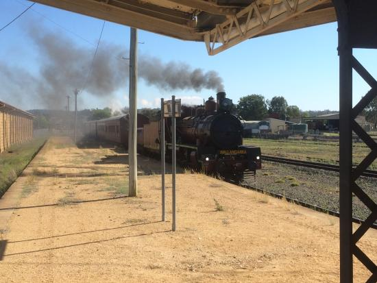 Southern Downs Steam Railway