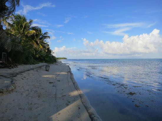 Sin Duda Villas: beach at sundown