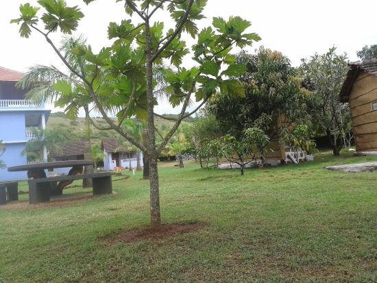 Avalon Inn: view from the hammock on the cottages and bungalows