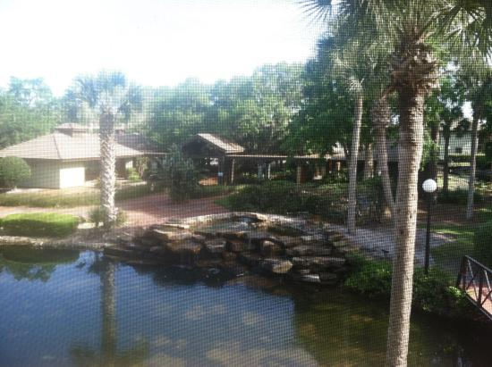Palm Coast Villas: Our view from the balcony