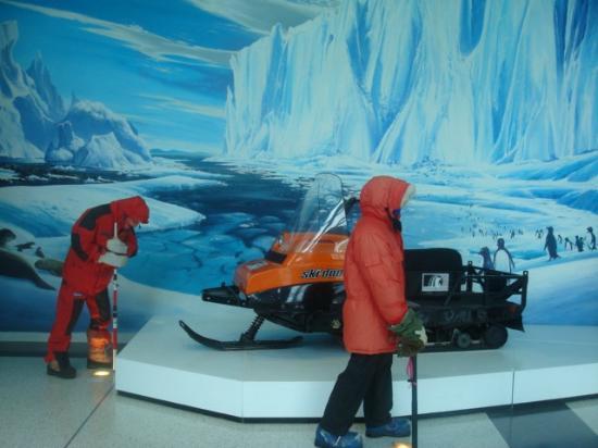 International Antarctic Centre: Simulação
