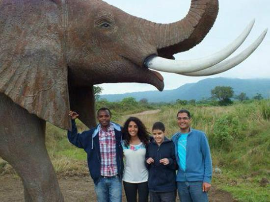 Arusha Region, تنزانيا: Greg Adventures