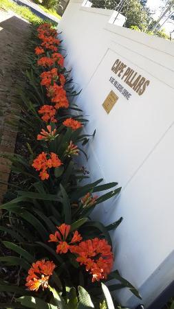 Cape Pillars Boutique Hotel: Spring at Cape Pillars
