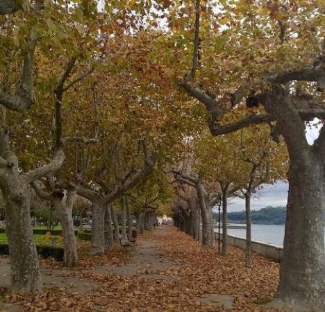 Marta, إيطاليا: Il lungolago di Marta in autunno!!! Meraviglioso, ameno, tranquillo - Emanuele Carioti
