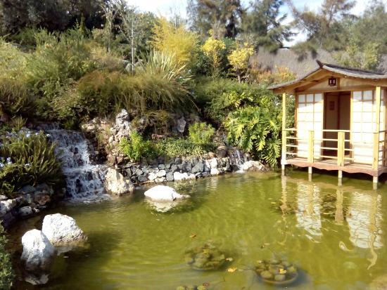 Mirador - Foto van Jardin Botanico Molino de Inca, Torremolinos - TripAdvisor