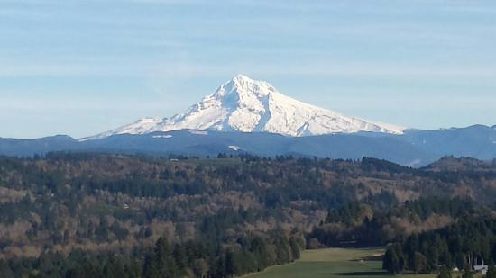Sandy, OR: The view of Mt. Hood on Nov 17th, 2014
