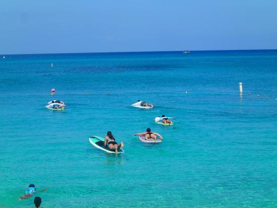 Cayman Stand Up Paddle Co: swimming out