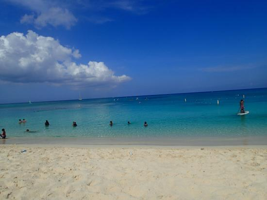 Cayman Stand Up Paddle Co: the view