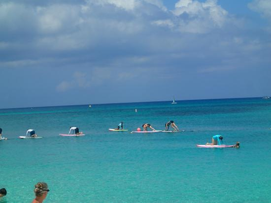 Cayman Stand Up Paddle Co: doing some yoga-awesome!