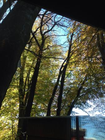 Grotto del Pep : I colori autunnali