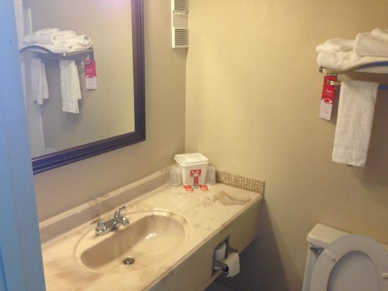 Econo Lodge Burlington: bathroom vanity