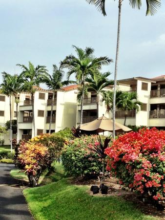 Kona Coast Resort: phase 1 units