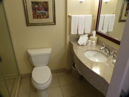 Hilton Garden Inn Las Vegas Strip South: king room bathroom