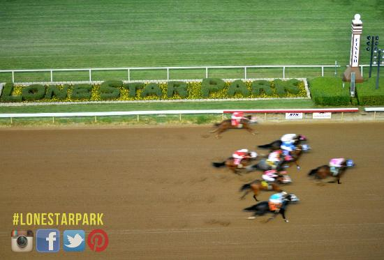 Lone Star Park: Quarter Horse racing