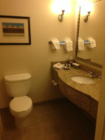 Stonewall Jackson Hotel and Conference Center: Bathroom