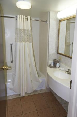 Hampton Inn Newberry Opera House: Bathroom